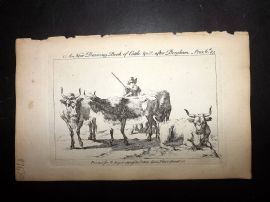 Sayer Compleat Drawing-Book 1757 Antique Print. Study of Cattle 85